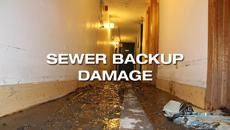 sewer backup damage